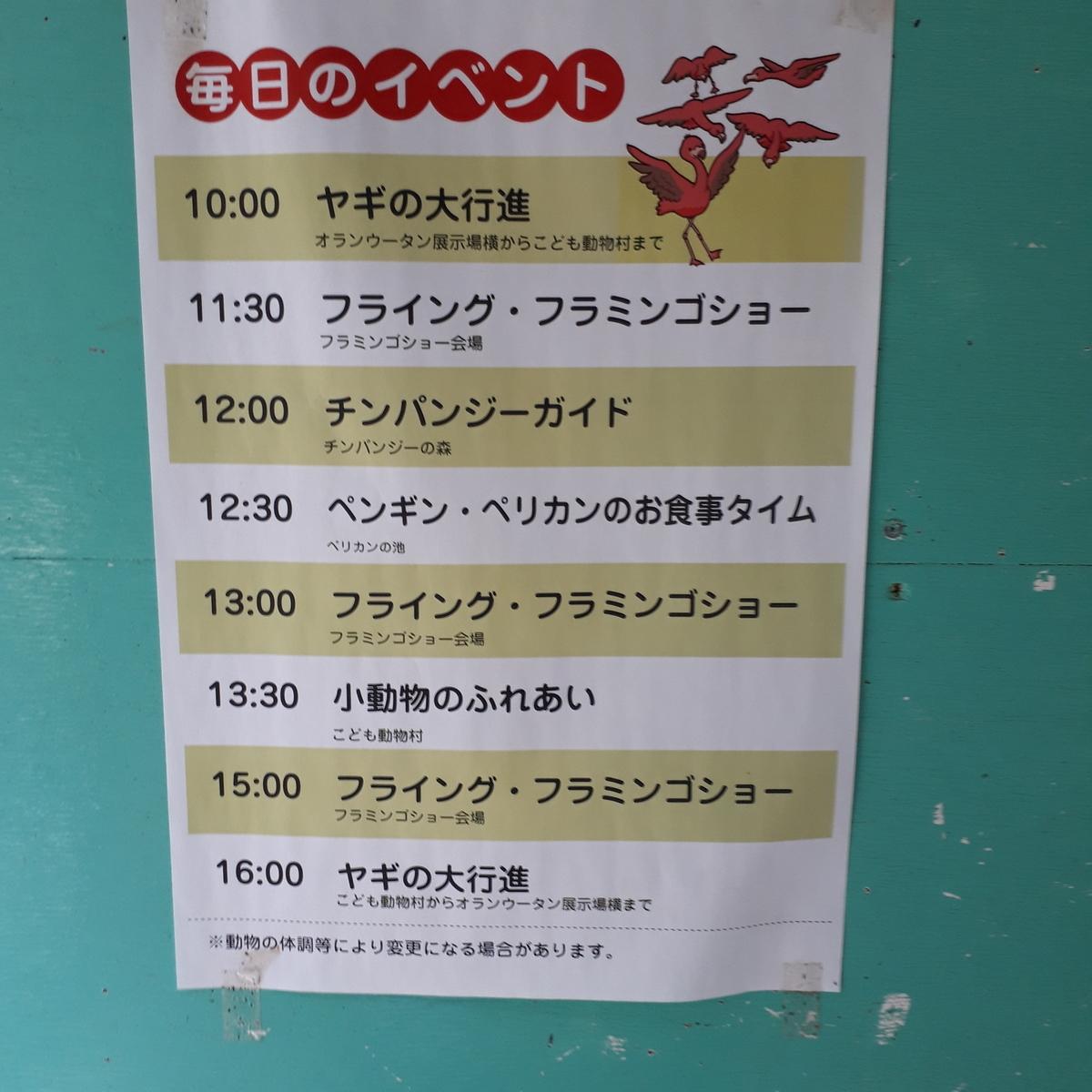 宮崎市フェニックス自然動物園 毎日のイベント