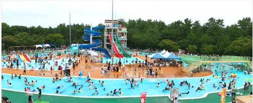 宮崎史フェニックス自然動物園 流れるプール