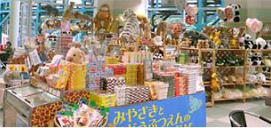 宮崎市フェニックス自然動物園 ショップ