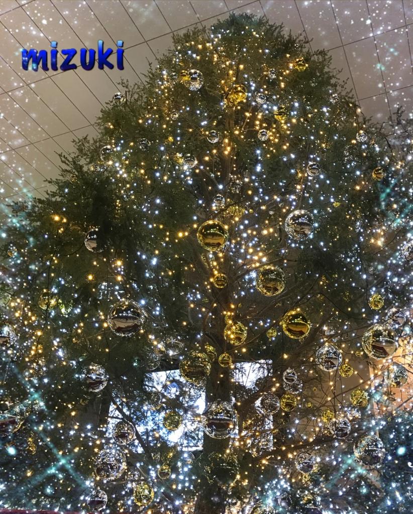 f:id:mizuki5482:20161219153800j:plain