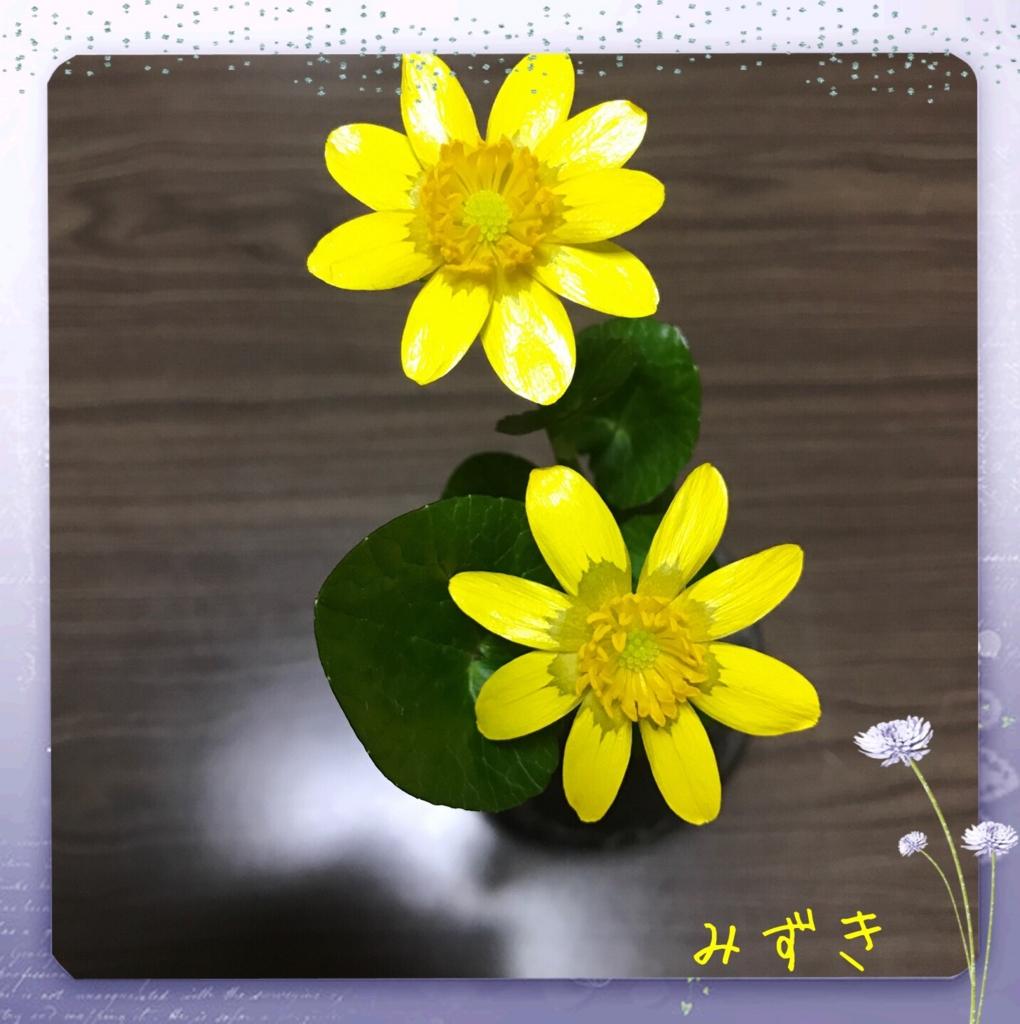 f:id:mizuki5482:20170317150429j:plain