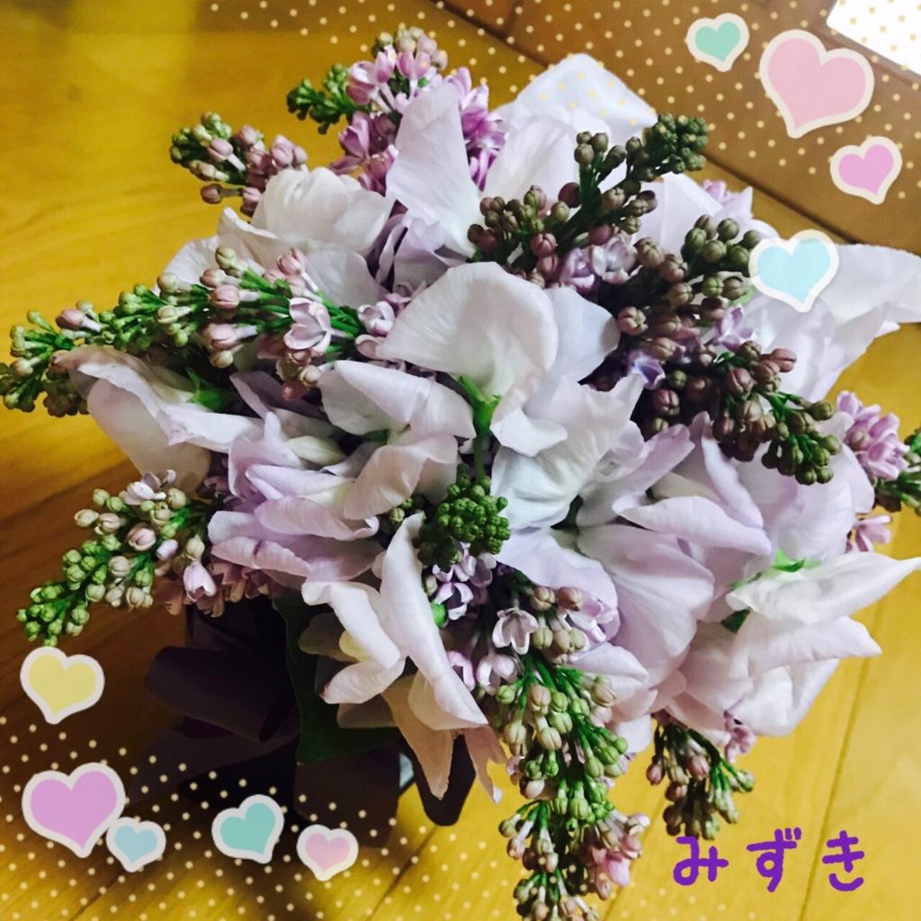 f:id:mizuki5482:20170403125437j:plain