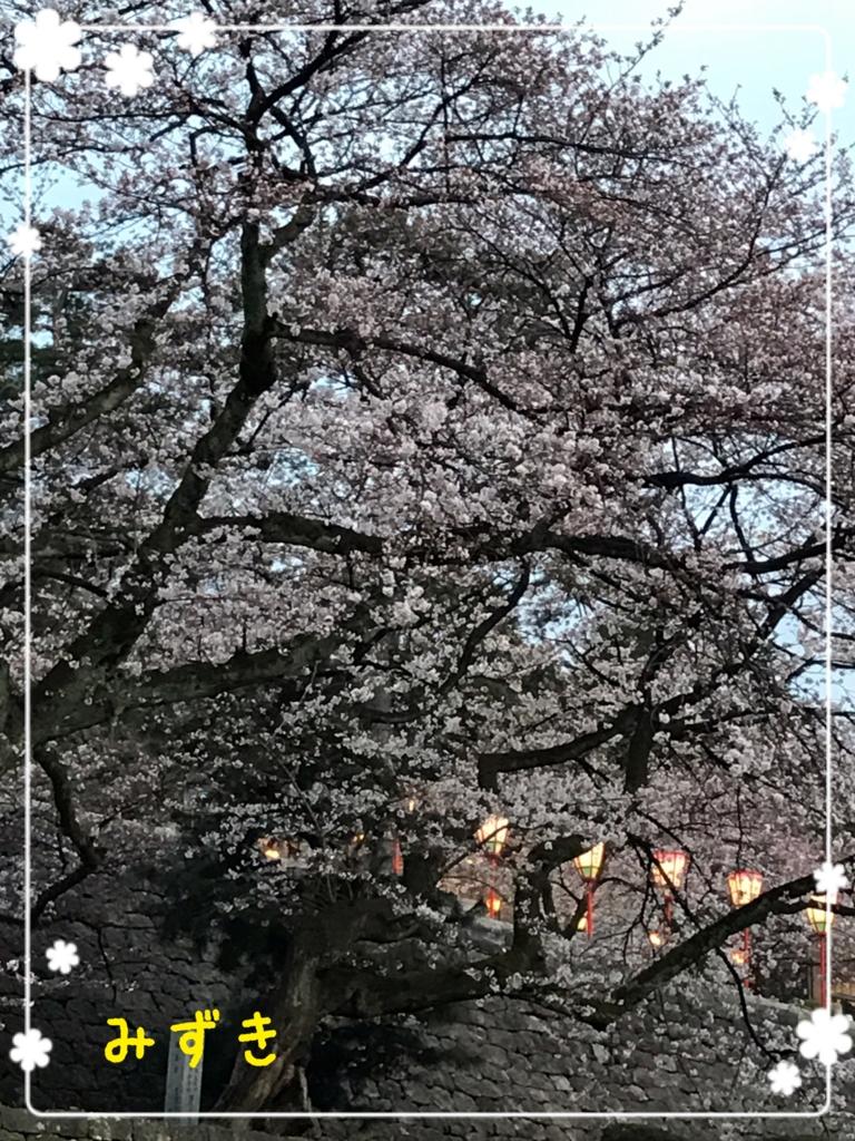 f:id:mizuki5482:20170410144756j:plain