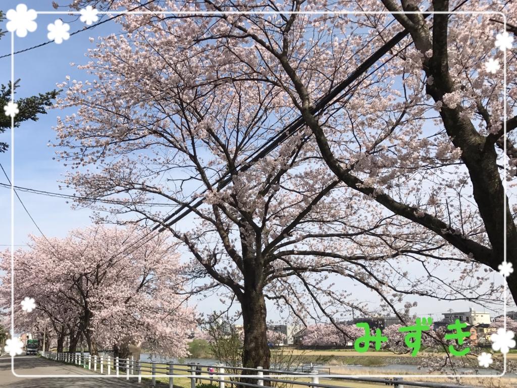 f:id:mizuki5482:20170410145011j:plain