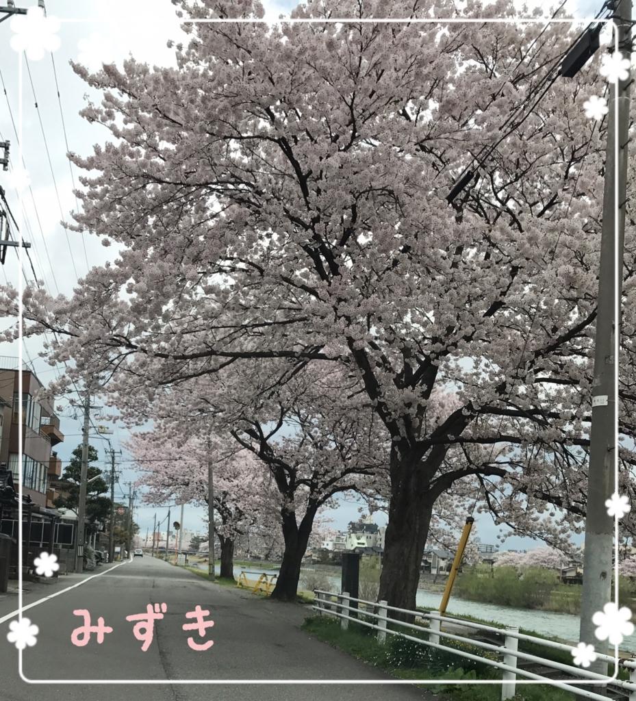 f:id:mizuki5482:20170413113005j:plain