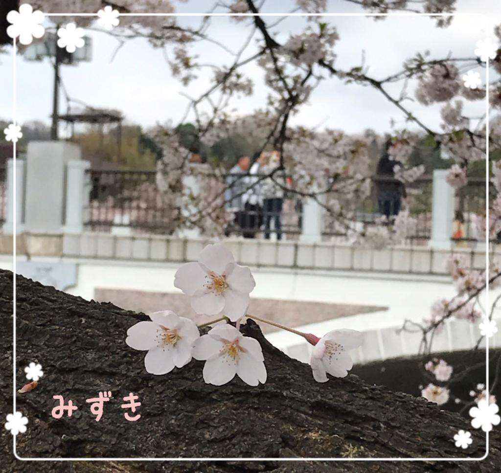f:id:mizuki5482:20170418142554j:plain