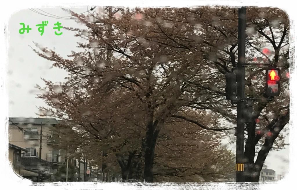 f:id:mizuki5482:20170418142823j:plain