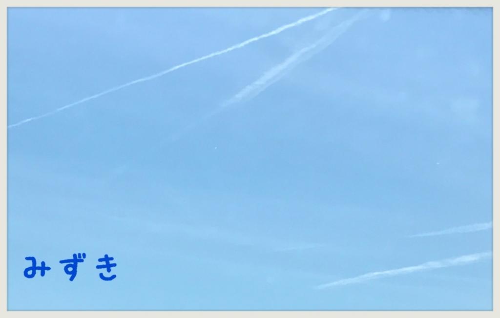 f:id:mizuki5482:20170606113615j:plain