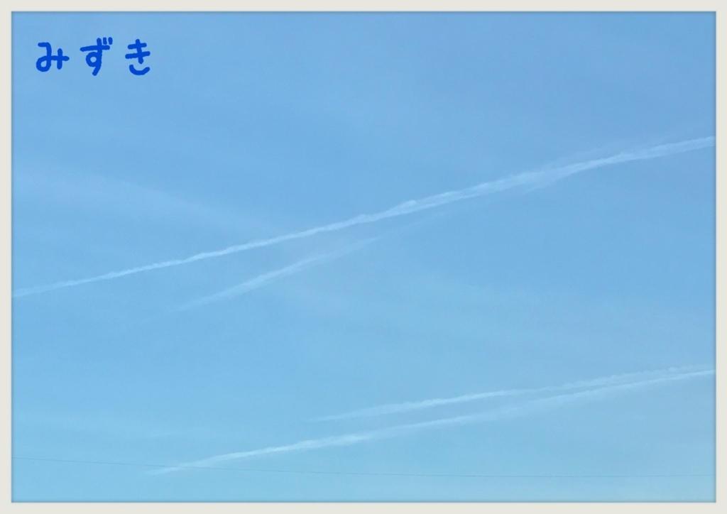 f:id:mizuki5482:20170606113714j:plain