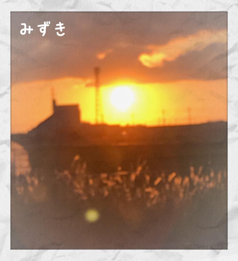 f:id:mizuki5482:20170614110053j:plain
