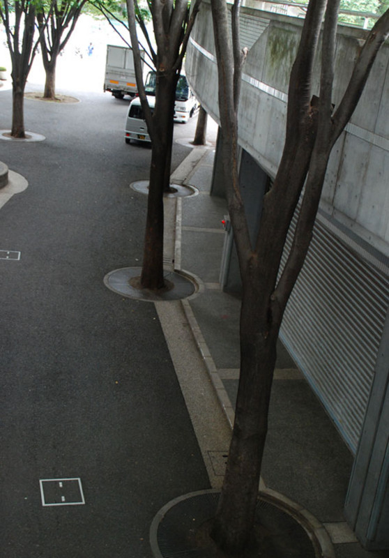 f:id:mizuki_akise:20090712051249j:image