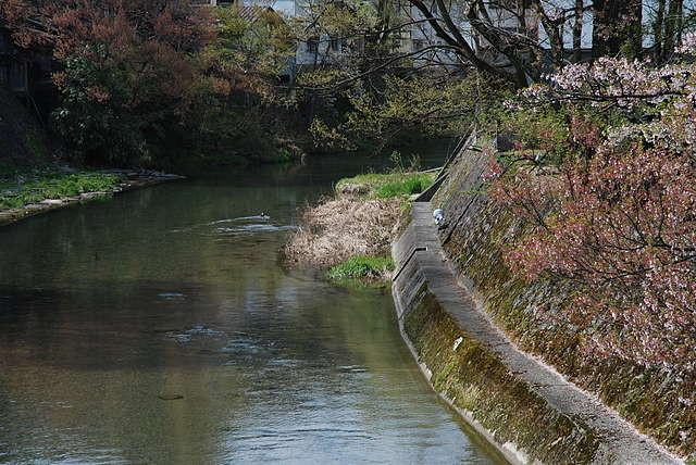 f:id:mizuki_akise:20110509224714j:image