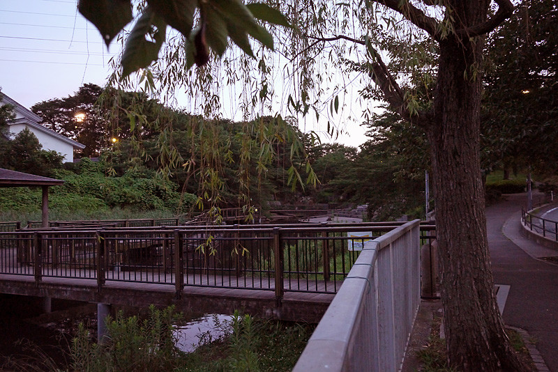 f:id:mizuki_akise:20120723222703j:image