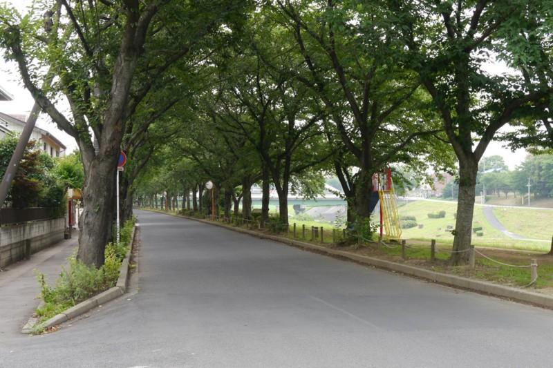 f:id:mizuki_akise:20140715072228j:image