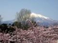 弘前城 本丸から眺めた津軽富士(岩木山)1625m