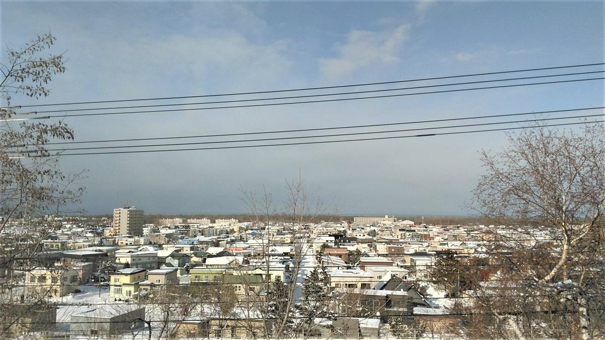 f:id:mizukinoko:20200209213556j:plain