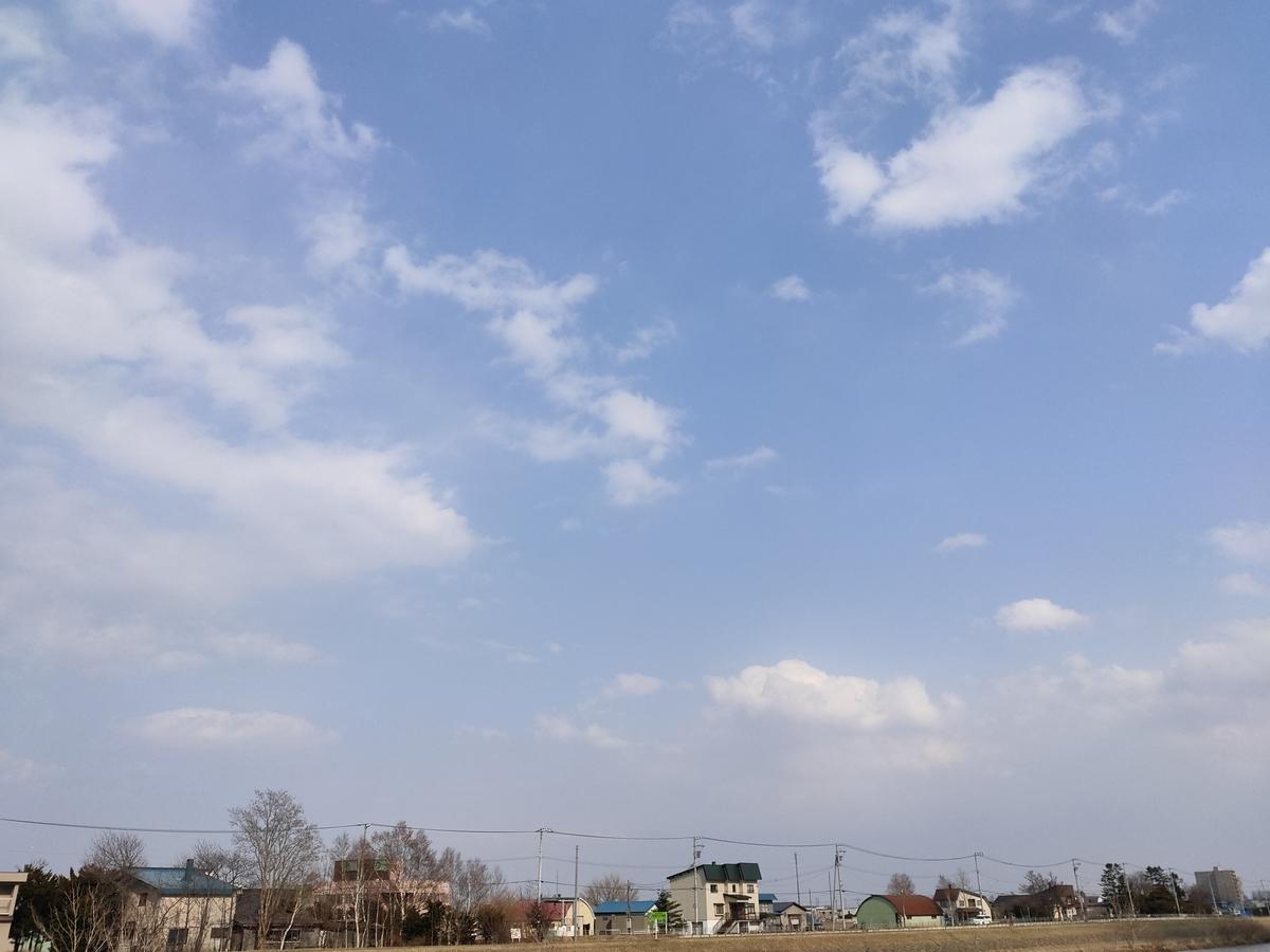 f:id:mizukinoko:20200408203032j:plain