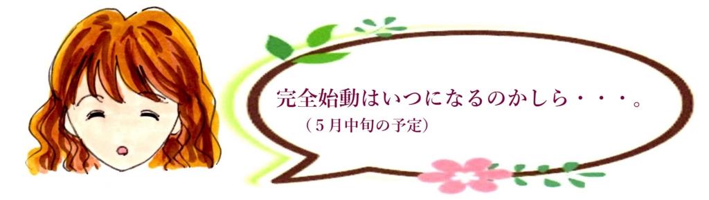 f:id:mizukiyuika:20170503160105j:plain