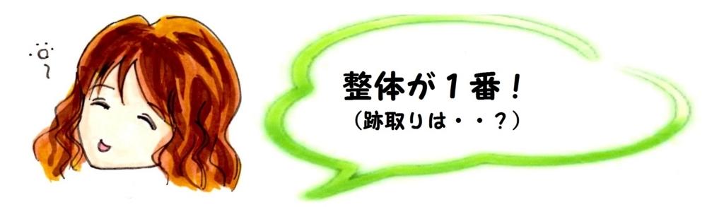 f:id:mizukiyuika:20170802185150j:plain