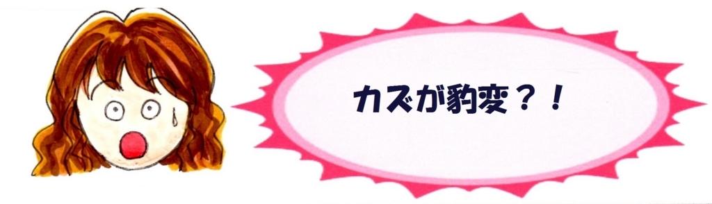 f:id:mizukiyuika:20171204190746j:plain
