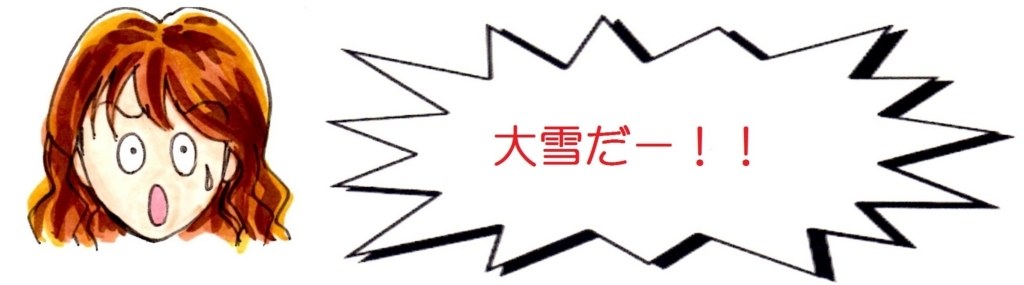 f:id:mizukiyuika:20180112215033j:plain
