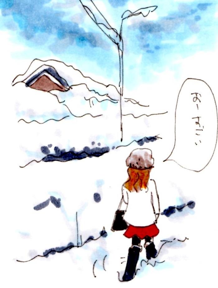 f:id:mizukiyuika:20180112220106j:plain