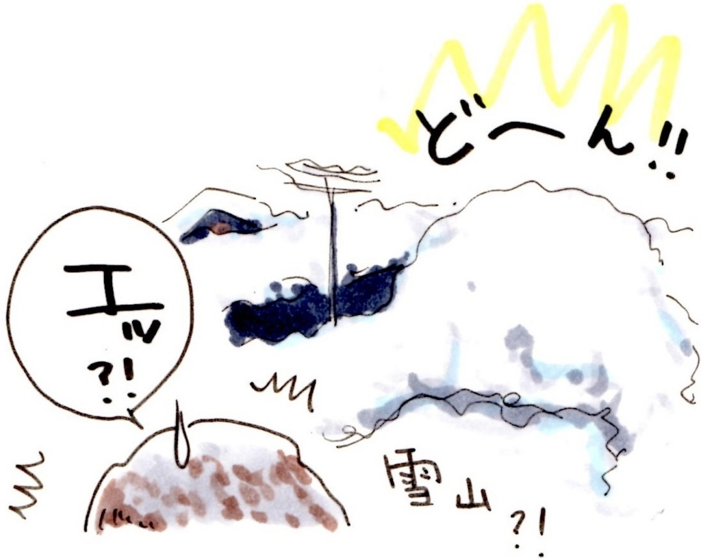 f:id:mizukiyuika:20180112220130j:plain