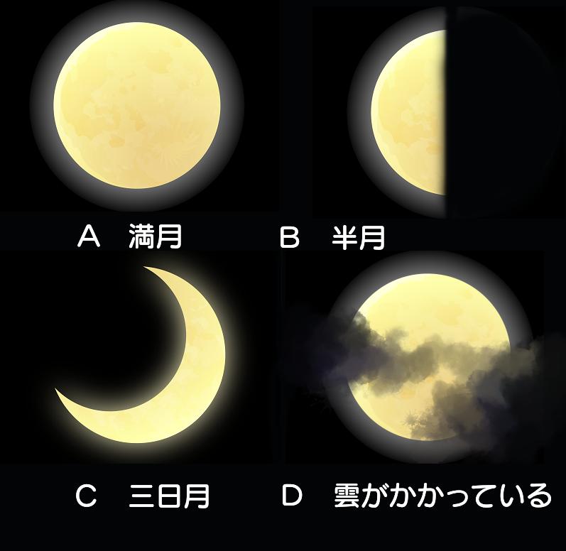 f:id:mizukiyuika:20200910125343p:plain
