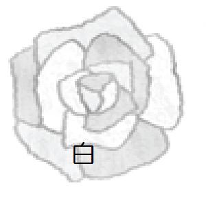 f:id:mizukiyuika:20200912125528p:plain