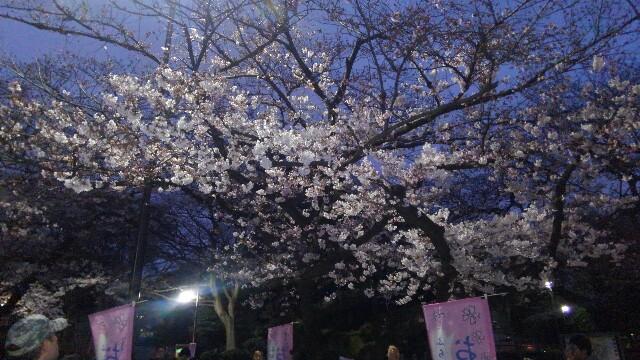 f:id:mizuna589:20170402011624j:image