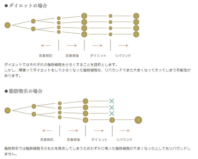 f:id:mizunomori-biyougeka:20151127174128p:plain