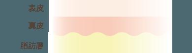 f:id:mizunomori-biyougeka:20170517133406p:plain