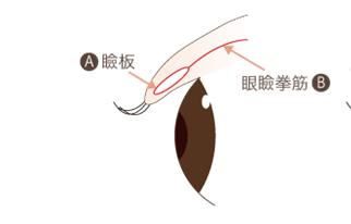 f:id:mizunomori-biyougeka:20180320100029p:plain