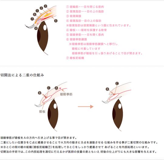 f:id:mizunomori-biyougeka:20181020183330p:plain