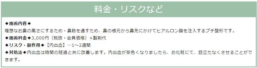 f:id:mizunomori-biyougeka:20190122161151j:plain