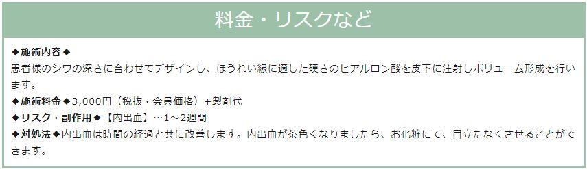 f:id:mizunomori-biyougeka:20190122161257j:plain