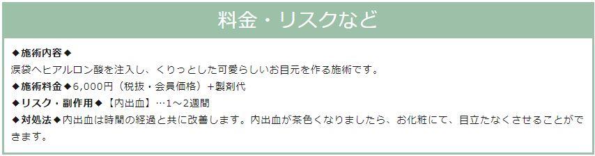 f:id:mizunomori-biyougeka:20190122161317j:plain