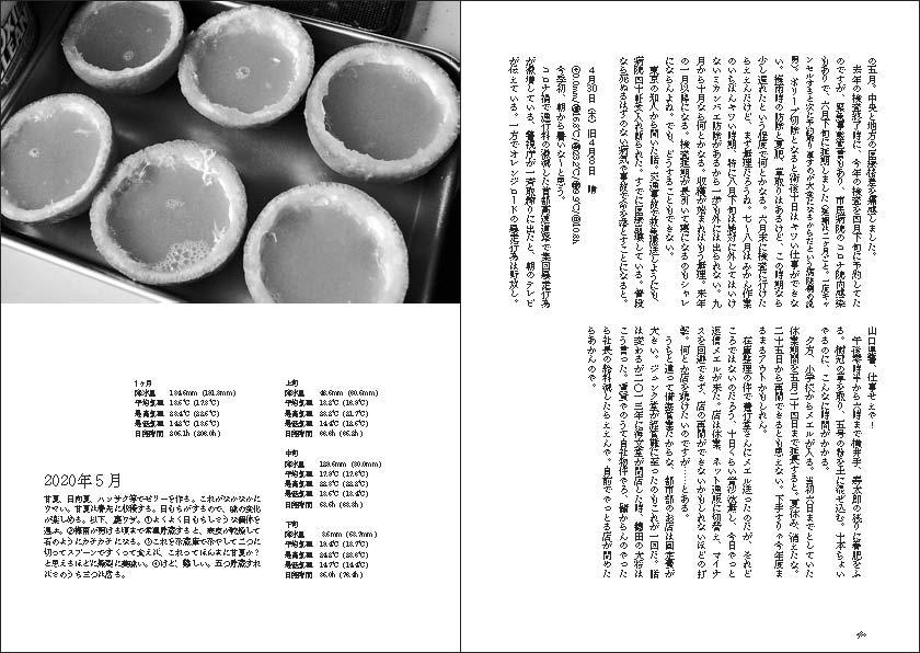 f:id:mizunowa:20201208100357j:plain