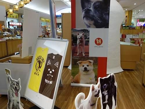 お土産売り場の秋田犬パネル