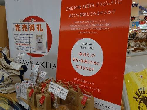 秋田犬お土産
