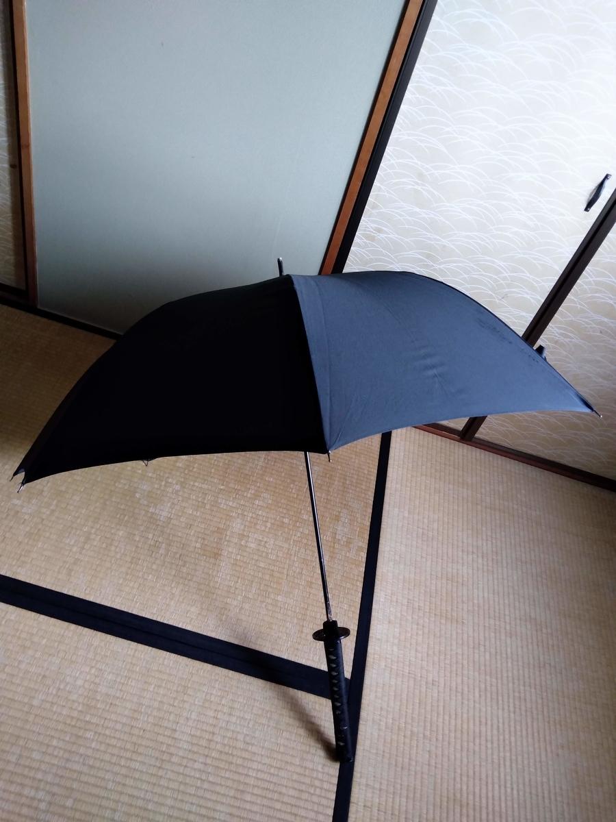 f:id:mizusato_ume:20190609154339j:plain