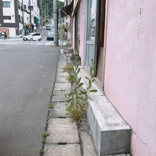 f:id:mizusawanao:20200418195734j:plain