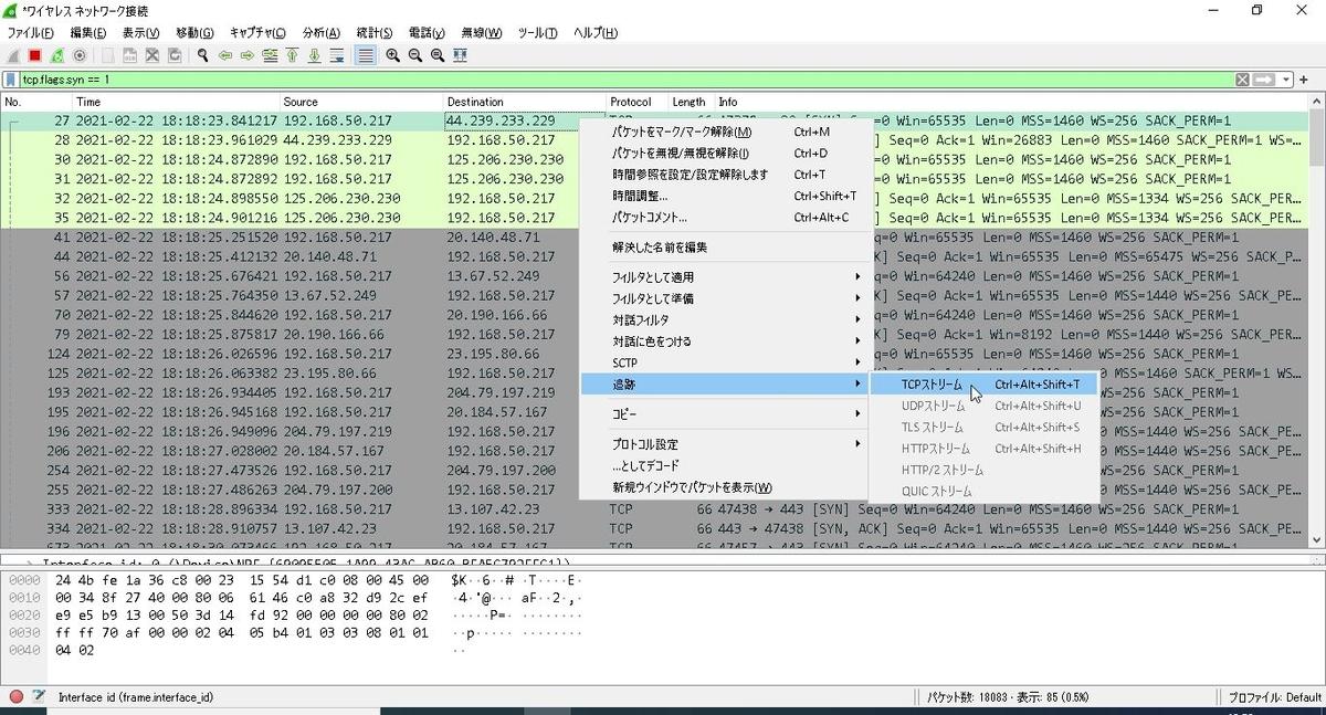 f:id:mizushibuki:20210222185008j:plain