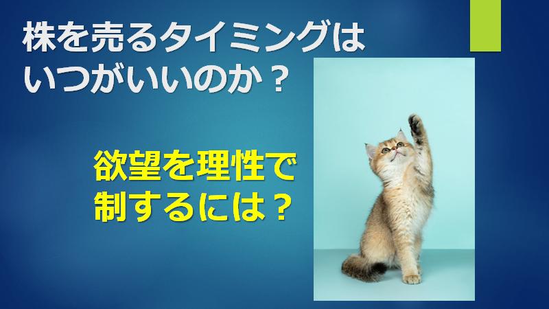 f:id:mizutama2018:20210305220741p:plain