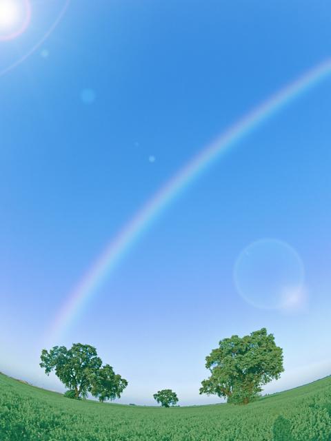 虹の見える青い空