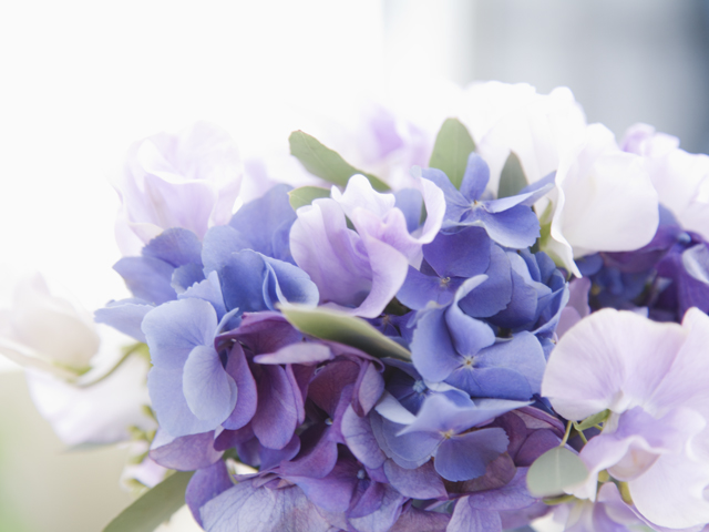 紫と青の小花の花束