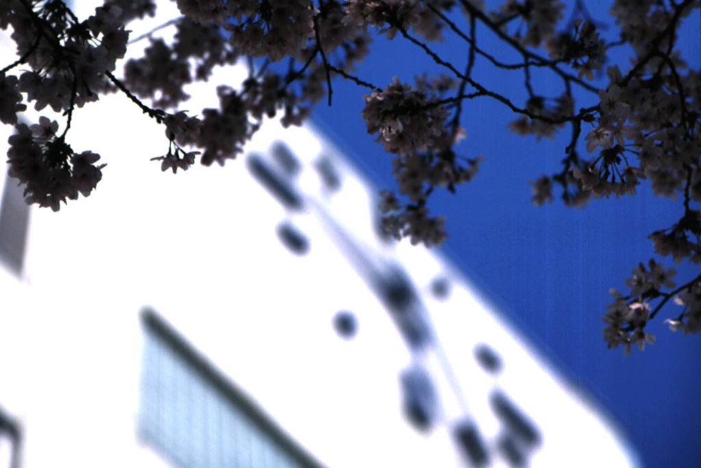 白い建物のイメージ