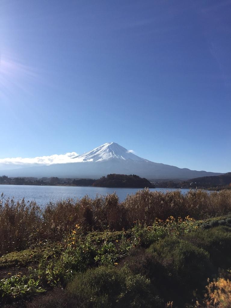 山中湖から臨む富士山