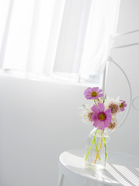 窓辺にピンクの花