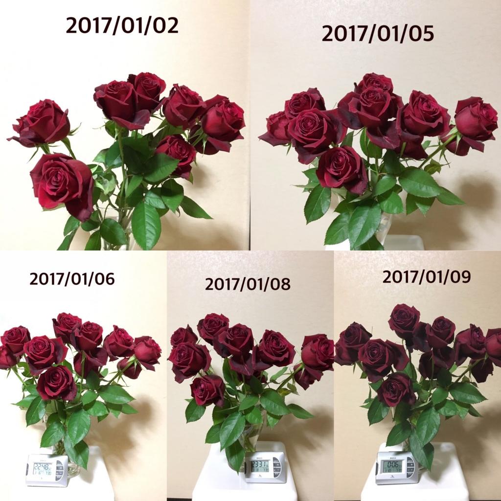 f:id:mizutukuri:20170112174121j:plain:w250